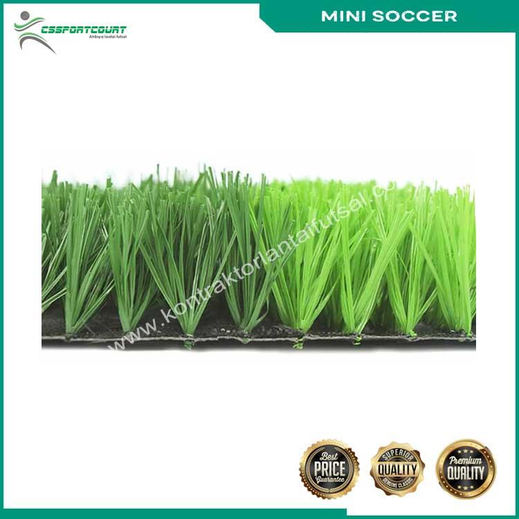 rumput-mini-soccer-5