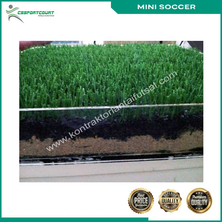 rumput-mini-soccer-6